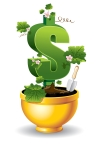 dollar is rising in the golden flower pot