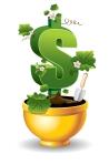 dollar is rising in the golden flower pot